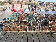 lobster-pots.jpg